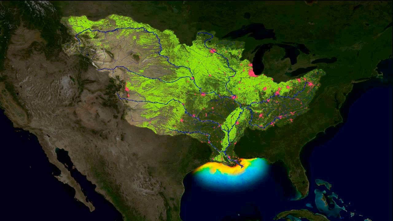 an overview of the pollution problem in the dead zone in the gulf of mexico 'dead zone' in gulf of mexico will take decades to recover from farm pollution a  new study says that even in the 'unrealistic' event of a total halt.